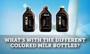 Milk Bottlesq